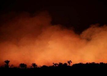 ONU llama a proteger la Amazonía en medio de incendios