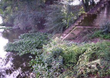 La Comisión Europea inicia una investigación sobre el agua suministrada en Almendralejo