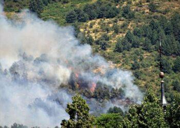 «Se necesita mayor reproche social a las conductas negligentes y dolosas que dan lugar a los incendios»