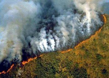 La Amazonía devorada por el saqueo capitalista