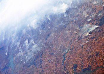 Desde Ecologistas Extremadura manifiestan su preocupación por la selva amazónica y el planeta