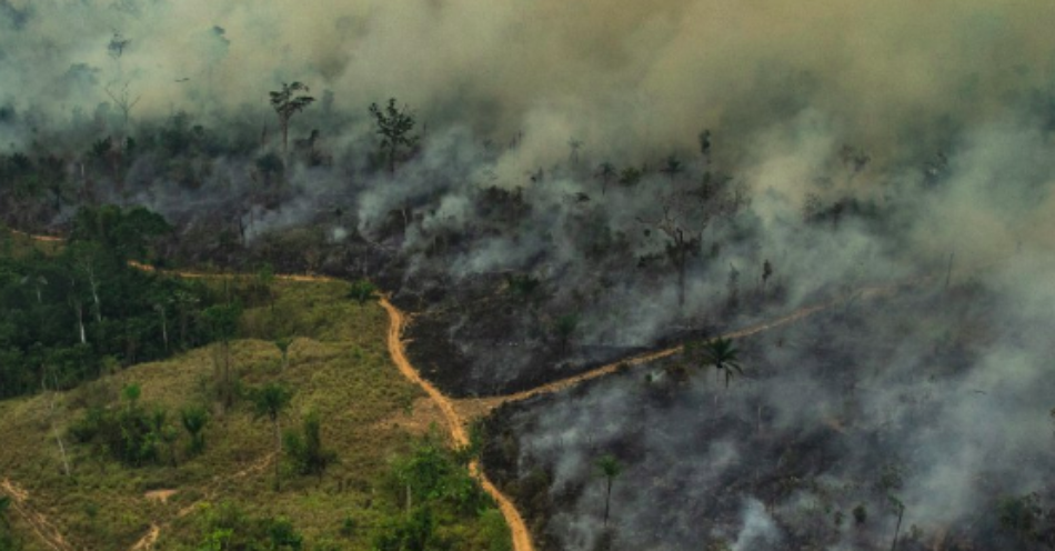 Greenpeace insta al G7 a «liderar una acción climática urgente»