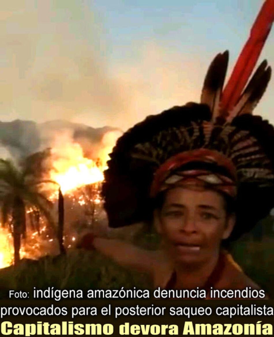 Los bosques del planeta arden en el altar del Capitalismo, y sigue el sobreconsumo teledirigido