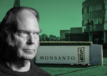 Campaña de Monsanto contra periodistas y ONGs