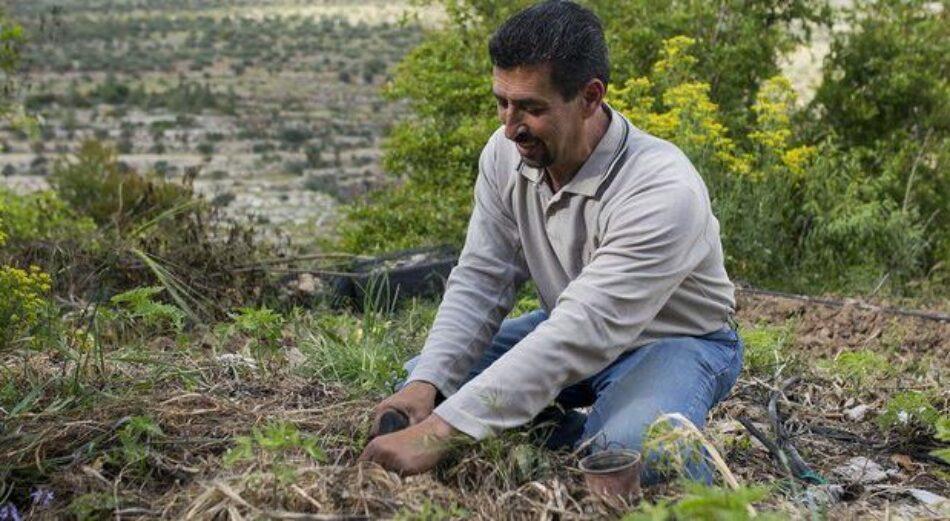 Palestina. La lucha por la soberanía alimentaria