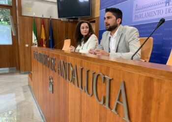 Adelante Andalucía ve intolerable que no se refuerce el 112 ante eventos masivos como festivales de música o ferias