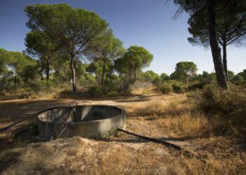 Equo reclama protección para Doñana en el Día Mundial de los Parques Nacionales