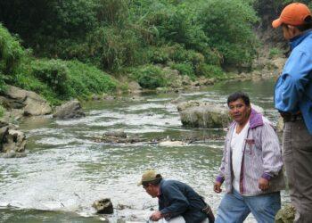 Se duplica la cifra de activistas ambientales asesinados en solo dos años, de los que el 40% son indígenas