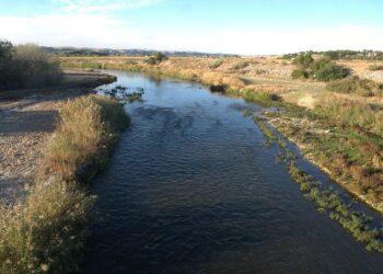 Organizaciones ecologistas denuncian la degradación consentida de los ríos madrileños