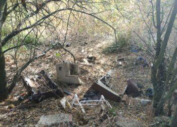 IU de San Andrés del Rabanedo denuncia nuevamente el estado de abandono de la Laguna de las Carrizas