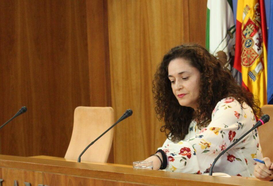 Inmaculada Nieto afirma que el Gobierno andaluz «ningunea la violencia machista con el teléfono de violencia intrafamiliar para no enfadar a Vox»