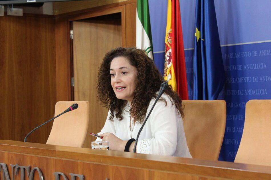 Nieto anima a Vox a «dar explicaciones por el uso indebido de dinero público por parte de sus dirigentes» en lugar de perseguir al tejido social andaluz