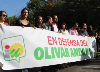 IU Andalucía pide «mayor regulación» para proteger al sector del olivar frente a «empresas especuladoras y fondos buitre»