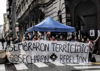 Argentina: Sigue la revolución de las flores nativas