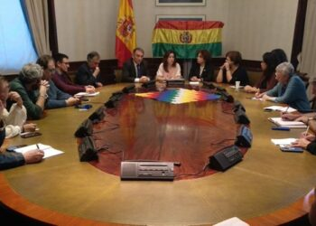 """Enrique Santiago anima al Gobierno español y a la UE a """"participar en el proceso de auditoría abierto por Bolivia y despejar cualquier duda sobre el resultado electoral"""""""