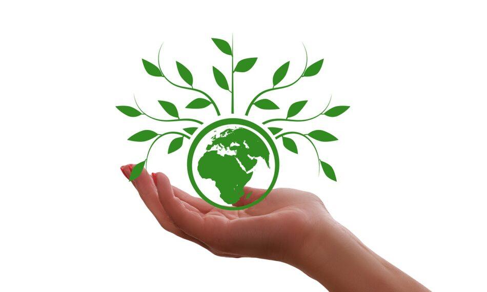 La revolución tecnológica impulsa el desarrollo de la agricultura sostenible en España