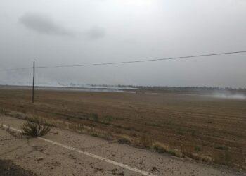Ecologistas Extremadura denuncia a la fiscalía de medioambiente las quemas ilegales en las vegas altas y bajas del Guadiana