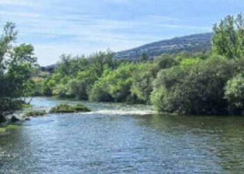 Los grupos ecologistas abandonan el Consejo de Pesca Fluvial de la Comunidad de Madrid