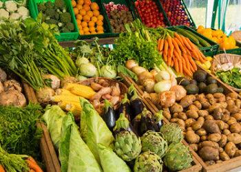 Un grupo de científicos pide a los ayuntamientos más compromiso con la alimentación sostenible