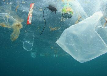 Amigos de la Tierra reclama a las empresas alternativas duraderas a los plásticos de un solo uso
