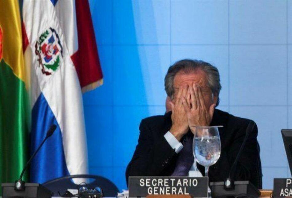 """Jorge Majfud exige que Luis Almagro renuncie a la OEA, por sus """"insistentes abusos de funciones"""""""