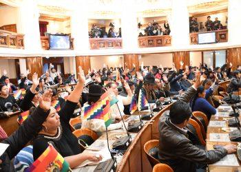 Bolivia aprueba la ley que convoca nuevas elecciones tras el acuerdo negociado entre el MAS y el gobierno de facto
