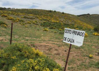 Reclaman al Consejero de Desarrollo Sostenible de Castilla-La Mancha un debate abierto y plural sobre el reglamento de caza
