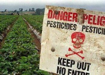 Ecologistas en Acción y Amigos de la Tierra lanzan una campaña para prohibir los plaguicidas sintéticos