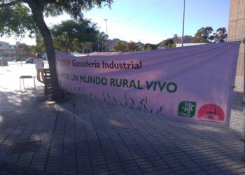 La denuncia de la ganadería industrial protagoniza el comienzo de Sepor Lorca, la feria de la industria cárnica
