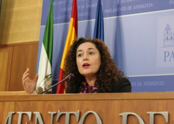 Adelante Andalucía ve «una falta de respeto» que el PP normalice los ceses por los recortes en la sanidad pública andaluza