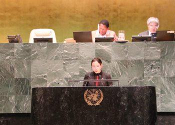 Venezuela reafirma su compromiso con la Reforma del Consejo de Seguridad de la ONU