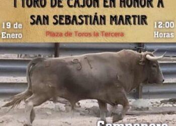 Denuncian el Toro de Cajón I, previsto para el 19 de enero en San Sebastián de los Reyes