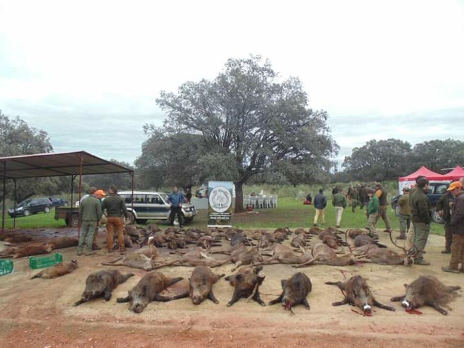 La Caza comercial pone en riesgo el Parque Nacional de Monfragüe según ongs ambientales