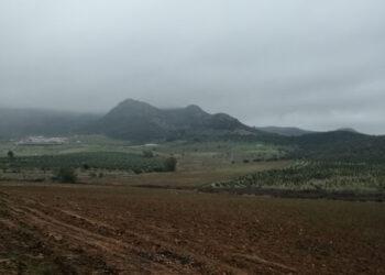 Ecologistas Extremadura denuncia un nuevo cambio de cultivo a regadío sin autorización en el ZIR-ZEPA Embalse de Orellana y Sierra de Pela