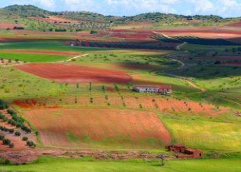 Invitan a las cinco grandes organizaciones ecologistas a adherirse al manifiesto por una Transición Ecológica Justa