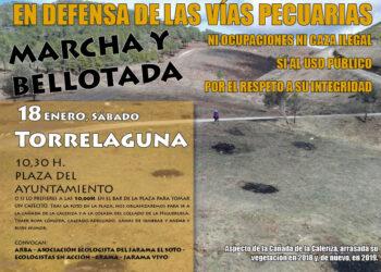 Organizaciones ecologistas denuncian que se caza en las vías pecuarias de la Comunidad de Madrid