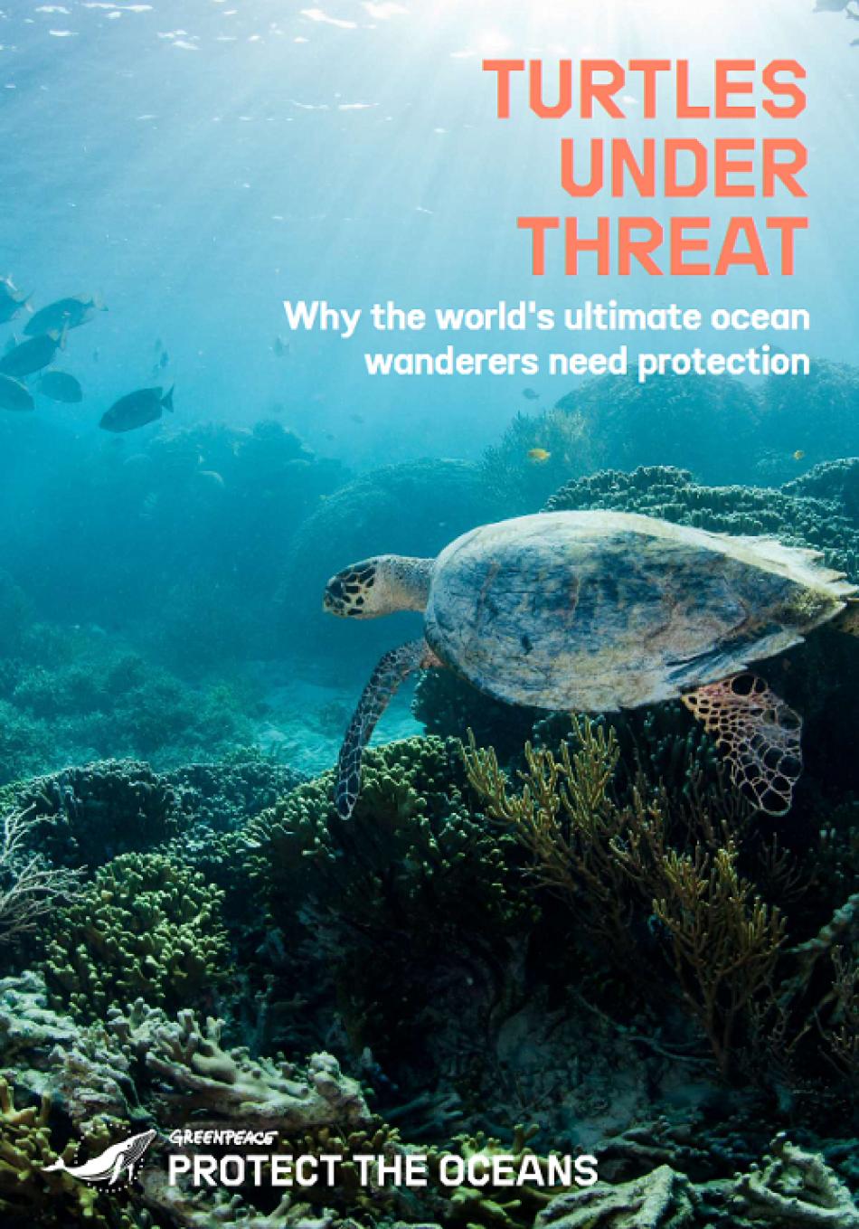 Las ganadoras del Oscar Helen Mirren y Olivia Colman denuncian, en un corto de Greenpeace, la crítica situación de los océanos