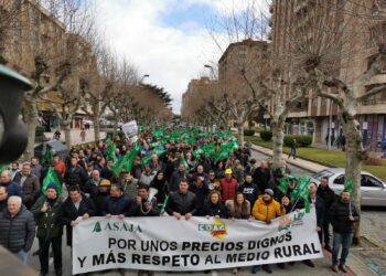 Irene de Miguel (UP), sobre las movilizaciones en el campo: «Hay que intervenir el mercado para fijar un precio mínimo en origen»