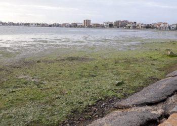 EQUO y el Partido Verde Europeo respaldan la petición de la coalición Pacto por el Mar Menor para que el Parlamento Europeo proteja este espacio único