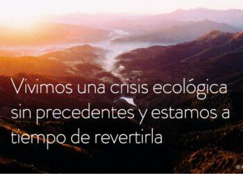 Ecologistas en Acción demanda a Teresa Ribera que analice las causas del fracaso de España en detener la pérdida de biodiversidad