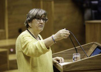 PCE-EPK rechaza la equiparación del fascismo con el comunismo aprobada en el Parlamento de Navarra con la abstención cómplice del PSN-PSOE