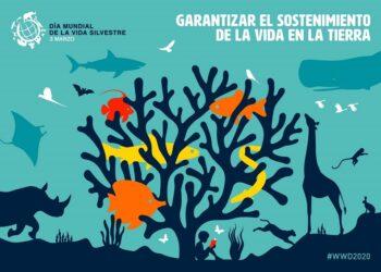 Sin la implicación de las administraciones y la presión de la sociedad no se podrá garantizar el sostenimiento de la vida en la Tierra
