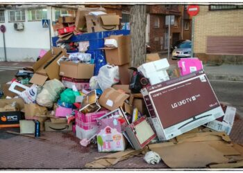 Mala gestión de los residuos, suciedad de la vía pública y falta de mantenimiento en Leganés