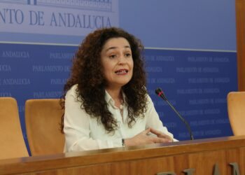 La oposición exige una comparecencia semanal del Consejero de Salud andaluz durante la crisis del Covid-19