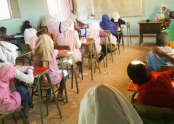 Arranca una nueva campaña de acogida de niños y niñas saharauis
