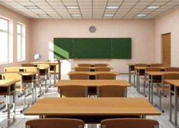 Mantener el empleo, fortalecer las plantillas, contratar profesorado interino y garantizar la cobertura, prioridades CCOO en el Consejo Escolar del Estado