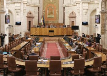 La Plataforma de Afectados por la RMI de Andalucía exige a la Junta que se empleen los 140 millones presupuestados para la RMISA