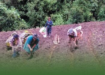 Indígenas y campesinos proponen plan de contingencia en Perú