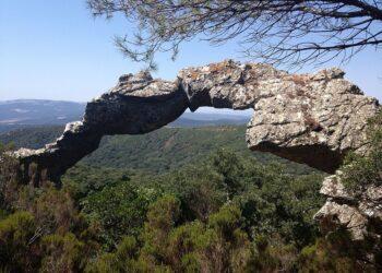 Satisfacción por el respaldo judicial a la ampliación del Parque Natural Los Alcornocales