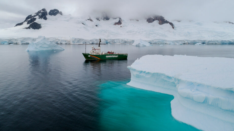"""Greenpeace concluye la expedición más ambiciosa de su historia con una demanda clara: """"Urge la protección de los océanos"""""""